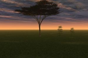 evening-68071_640