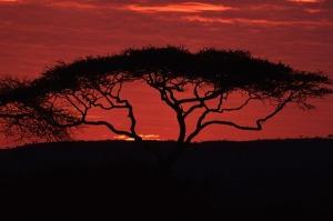 sunset-69590_640